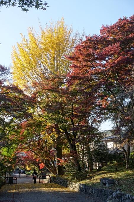 鷺森神社 No27