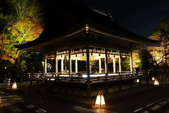 出雲大神宮_ライトアップ No9
