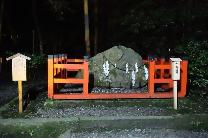出雲大神宮_ライトアップ No18
