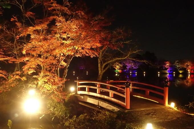 大覚寺 真紅の水鏡_No21