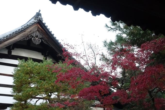 京都紅葉速報_14 No2