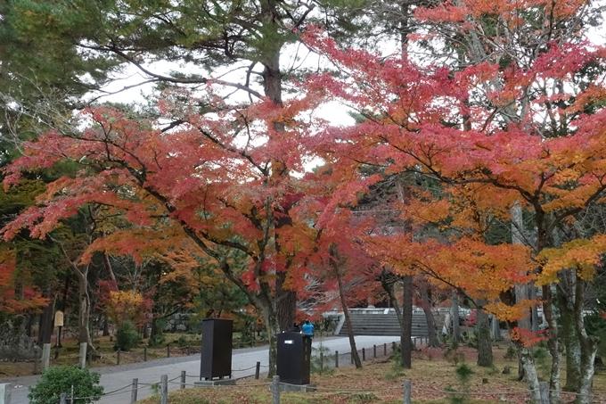 京都紅葉速報_14 No9
