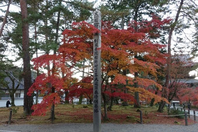 京都紅葉速報_14 No14