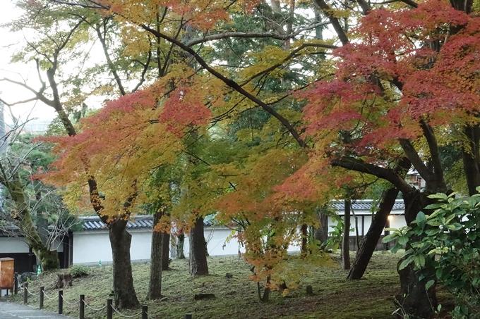 京都紅葉速報_14 No18