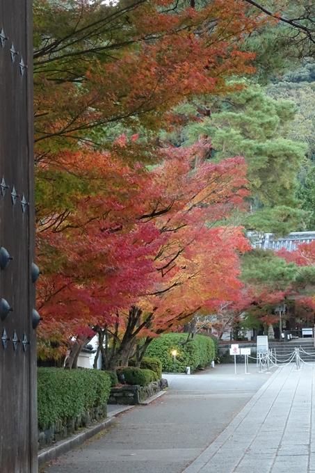 京都紅葉速報_14 No21