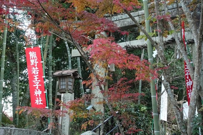 京都紅葉速報_14 No29