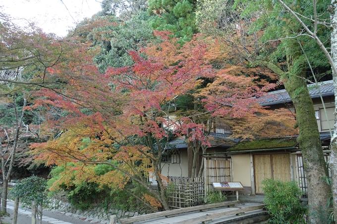 京都紅葉速報_14 No36