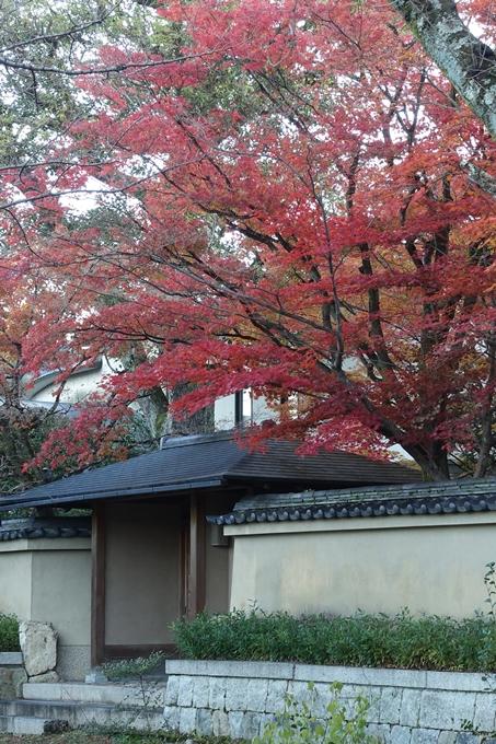 京都紅葉速報_14 No45