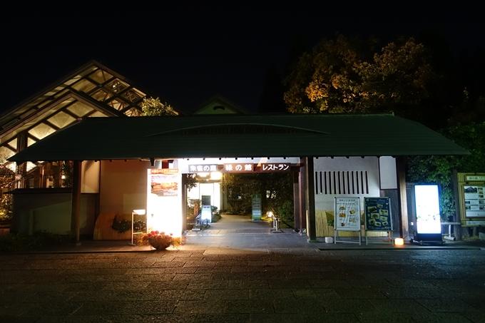 梅小路公園 紅葉まつり No3
