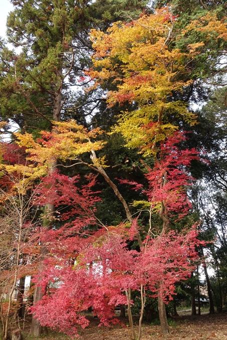 鷺森神社 No39