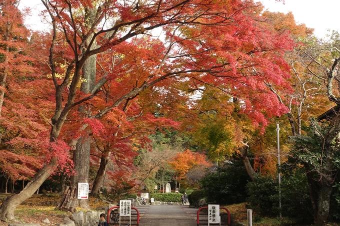 鷺森神社 No38