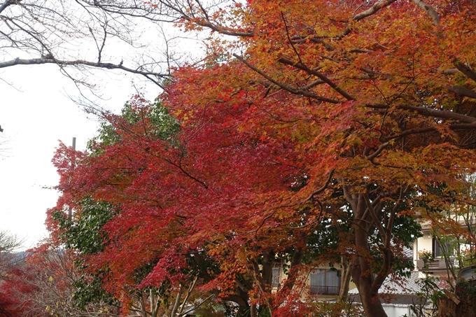 鷺森神社 No37