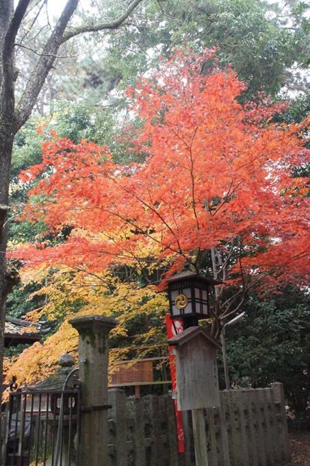 京都御苑 紅葉 No15
