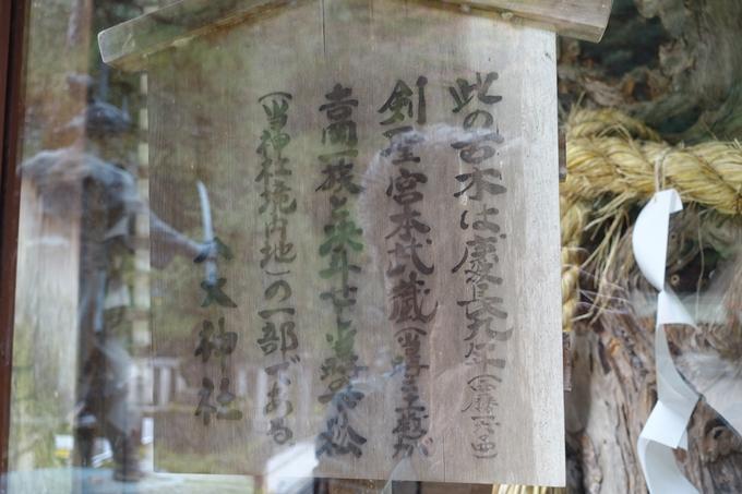 八大神社_2017秋 No12