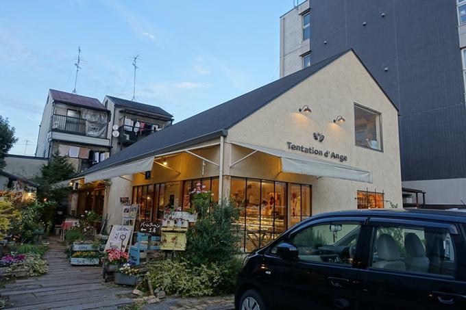 タンタシオン・ダンジュ No2
