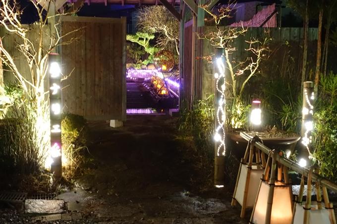 京都・丹波 夢ナリエ No6