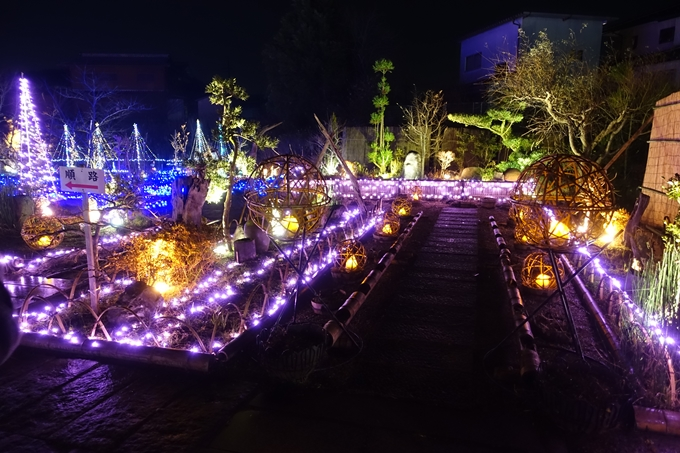 京都・丹波 夢ナリエ No9