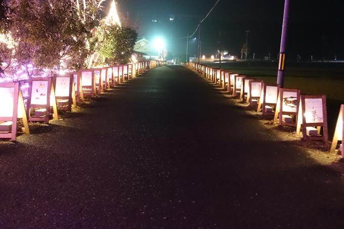 京都・丹波 夢ナリエ No32