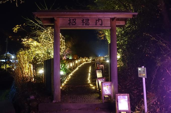 京都・丹波 夢ナリエ No36