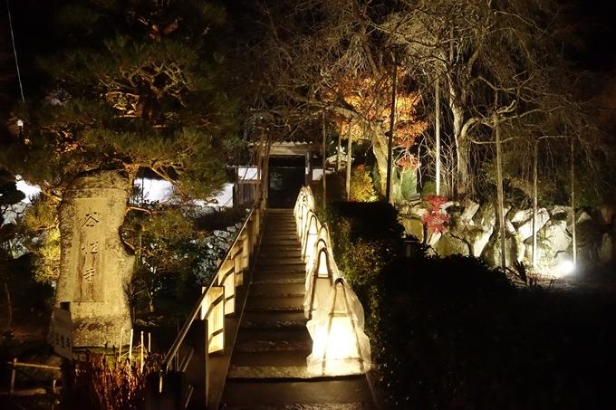 京都・丹波 夢ナリエ No56