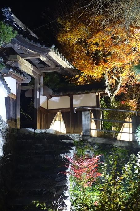 京都・丹波 夢ナリエ No60