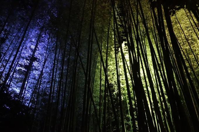 嵐山花灯路_2017_03 No14