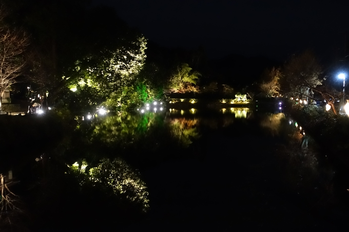 嵐山花灯路_2017_03 No24