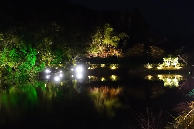 嵐山花灯路_2017_03 No26