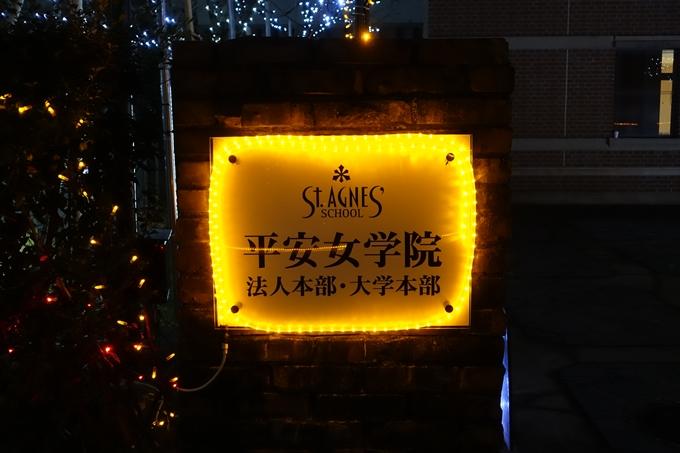 アグネス・イルミネーション No4