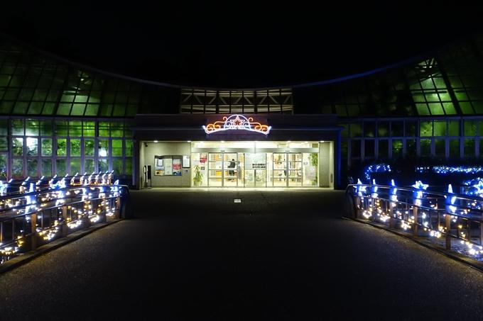 京都府立植物園_イルミネーション No15