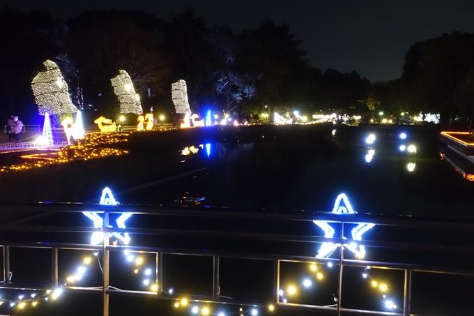 京都府立植物園_イルミネーション No16