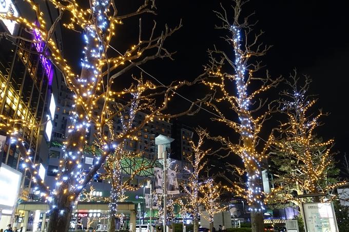京都駅ビル_クリスマスイルミネーション No4