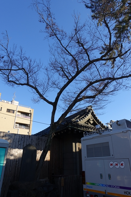 下御霊神社 No23