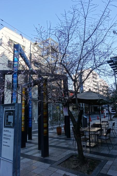 御池桜 No2