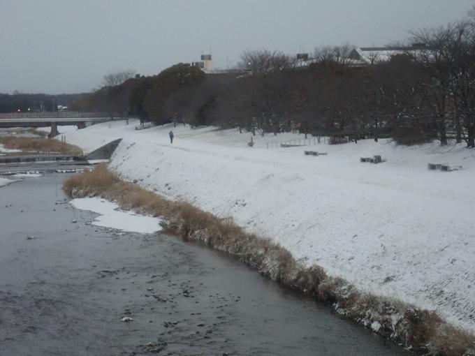 京都市内積雪 No7