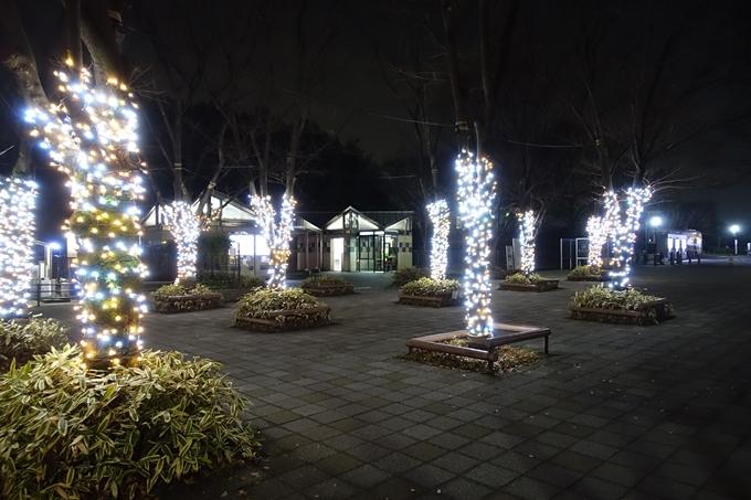 梅小路公園 ライトアップ2018 No3