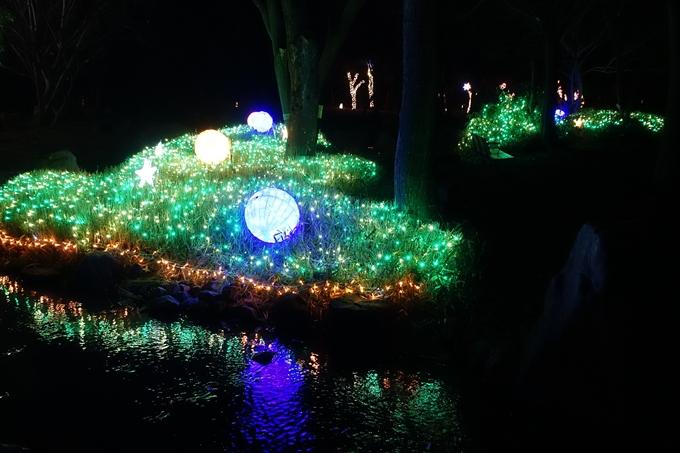 梅小路公園 ライトアップ2018 No23