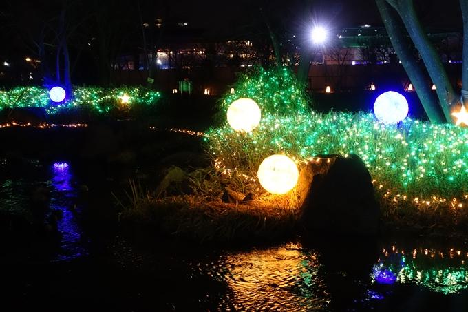 梅小路公園 ライトアップ2018 No25