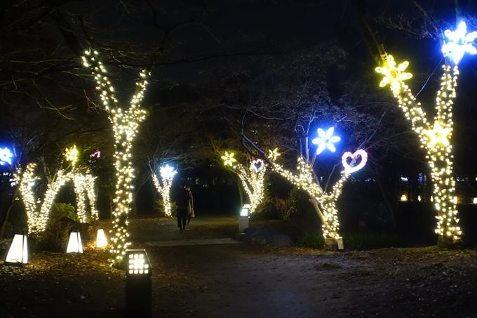 梅小路公園 ライトアップ2018 No28