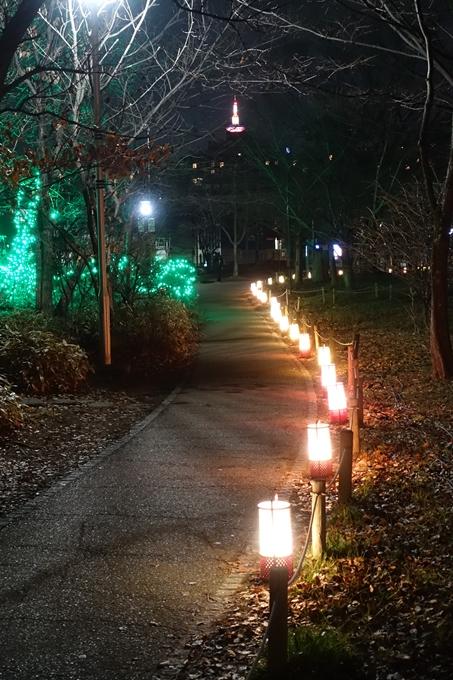 梅小路公園 ライトアップ2018 No34