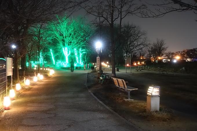 梅小路公園 ライトアップ2018 No40