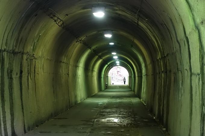 花山洞 No13