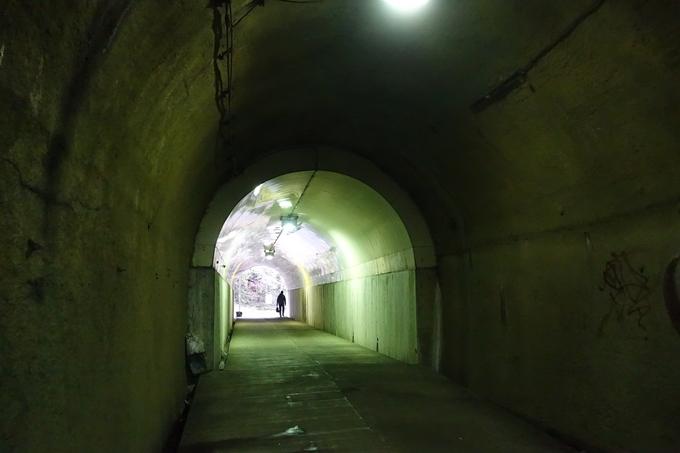 花山洞 No14