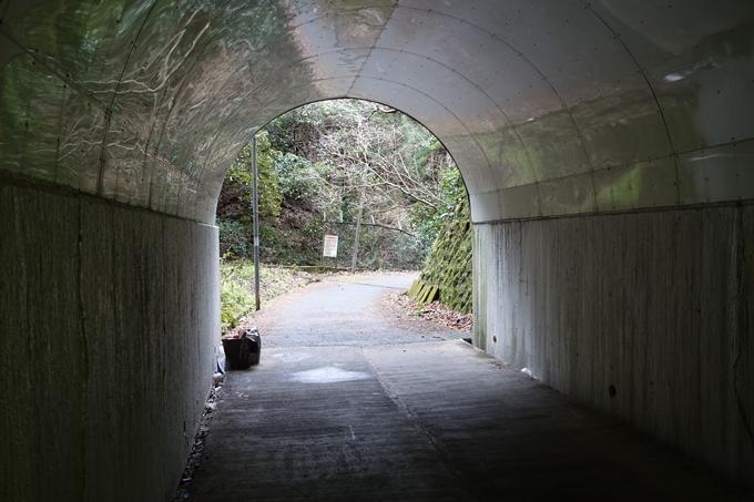 花山洞 No15
