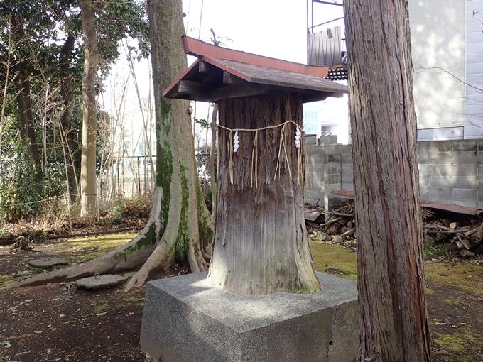 朝日神社 No9