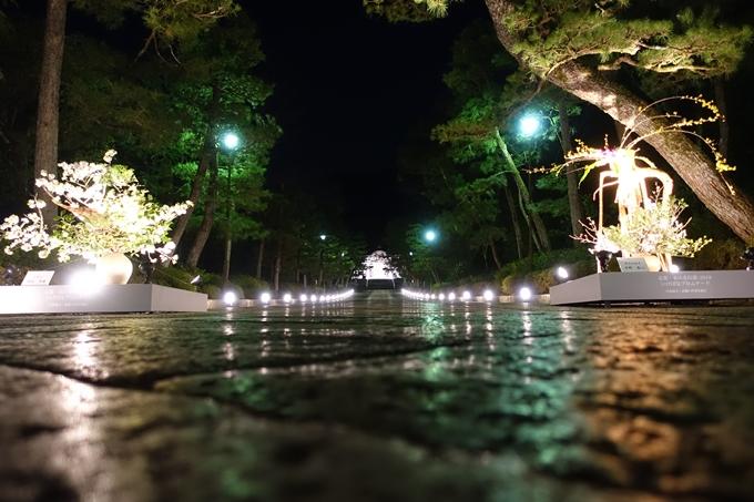京都東山花灯路2018 No130