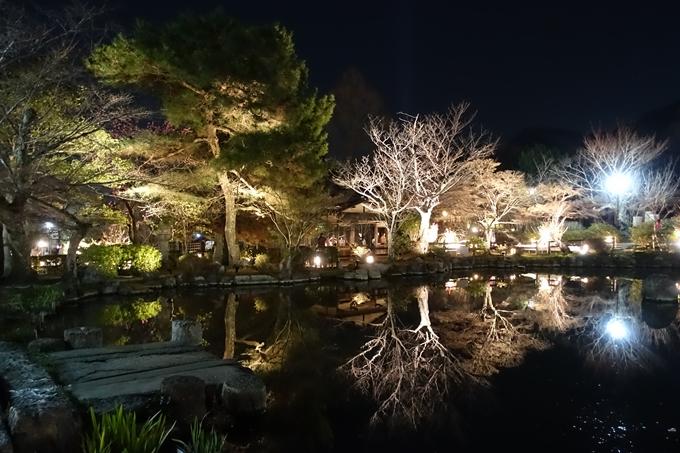 京都東山花灯路2018 No133