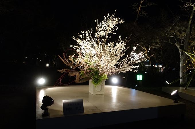 京都東山花灯路2018 No134