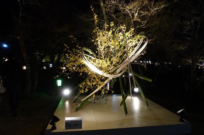 京都東山花灯路2018 No135