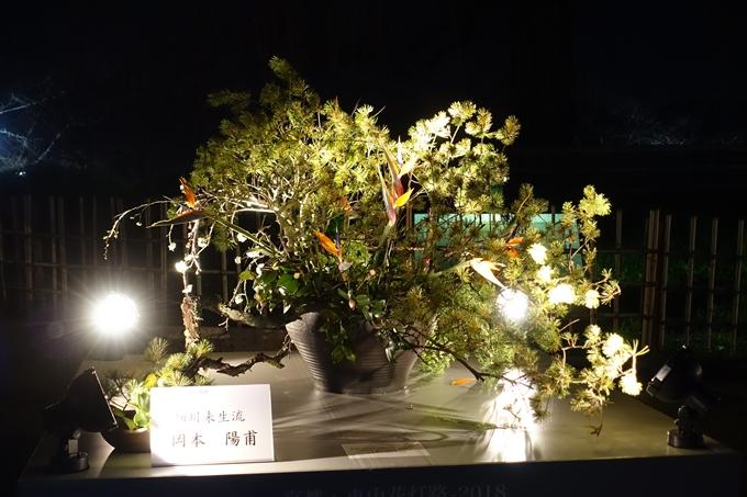 京都東山花灯路2018 No142